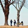 WARREN DILLAWAY / Star Beacon<br /> JOHN AND Barb Richardson of Kirtland walk between two trees near the Lodge at Geneva State Park on Friday. Warming temperatures got people moving outside for the first time in weeks.