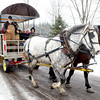 WARREN DILLAWAY / Star Beacon<br /> VISITORS TO the Bissell Maple Farm enjoy a ride in a horsedrawn wagon on Saturday morning during the Maple Madness Tour stop in Trumbull Township.