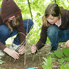 WARREN DILLAWAY / Star Beacon<br /> ISABELLA KINCAID (left), a sixth grader at Erie Intermediate School and Lily Simon, a fifth grader at the school, create nature art during the After School Discovery Waterways Adventures Outdoor Learning Day at Indian Trails in Ashtabula Friday.