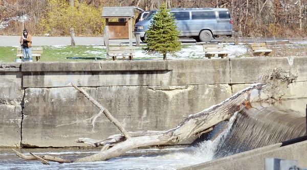 WARREN DILLAWAY / Star Beacon<br /> A FISHERMAN is dwarfed by a large tree stuck on Harpersfield Dam on Thursday afternoon.