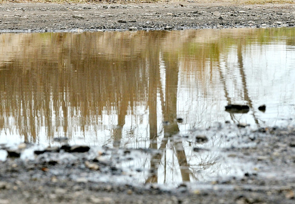 WARREN DILLAWAY / Star Beacon<br /> TREES ARE reflected in a water puddle near the Ashtabula Breakwall at Walnut Beach in Ashtabula on Friday afternoon.