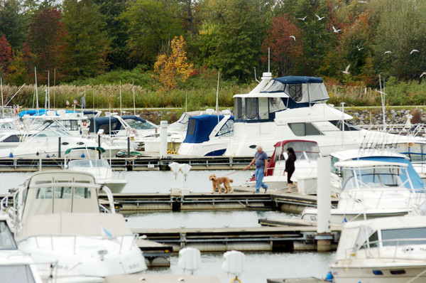 WARREN DILLAWAY / Star Beacon<br /> TWO PEOPLE walk a dog along a dock at Geneva State Park Marina on Tuesday morning.