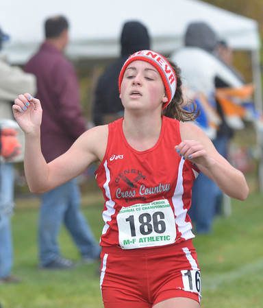 WARREN DILLAWAY / Star Beacon<br /> EMILY DEERING of Geneva started near the front and stayed there on Saturday qualifying for the Division II Ohio Athletic Association State Cross Country Meet in Columbus next week during the Boardman regional.