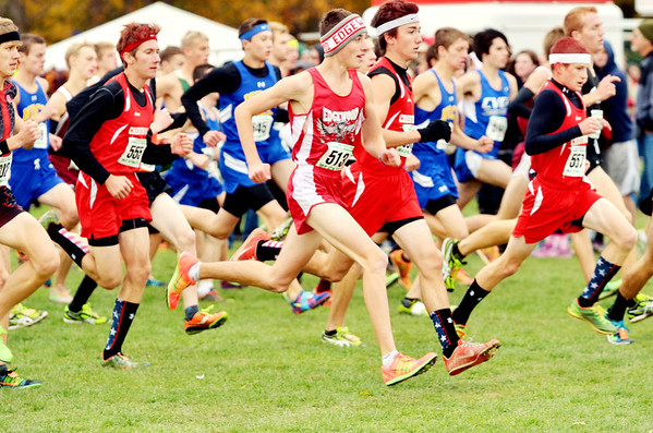 WARREN DILLAWAY / Star Beacon<br /> CHRIS LEMAY (center foreground) of Edgewood competes in the Division II Regional Cross Country Meet at Boardman on Saturday afternoon.