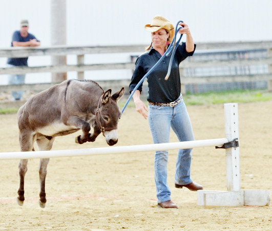 WARREN DILLAWAY / Star Beacon<br /> STACEY KOVACH of Munson Township participates in a donkey jumping contest on Saturday at the Great Geauga County Fair.