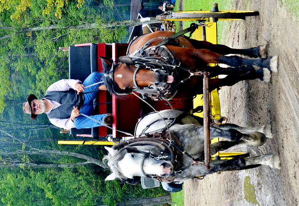 WARREN DILLAWAY / Star Beacon<br /> A HORSE drawn carriage adds to the historic Pioneer Picnic on Middle Road in Pierpont Township. The 123rd Pioneer Picnic continues this morning.