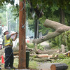 WARREN DILLAWAY / Star Beacon<br /> LARRY GROSS repairs power lines damaged Tuesday night when severe storms hit Lake Road in Conneaut.