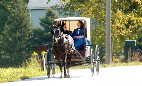 WARREN DILLAWAY / Star Beacon<br /> AN AMISH buggy drives west on Route 6 in Andover Township Friday morning.