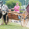 WARREN DILLAWAY / Star Beacon<br /> MACHELLE MALONEY of Auburn Township works out her Gypsy Vanner horse in preparation for competition today and tomorrow at The Great Geauga County Fair in Burton Township.