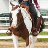 WARREN DILLAWAY / Star Beacon<br /> JODI GUNTHER of Hambden Township rides Magnuf Force during the novice trail division of the Junior Fair Horse Show Saturday at The Great Geauga County Fair in Burton Township.