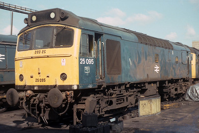 Class 25  25095 at Crewe on 23/08/1986
