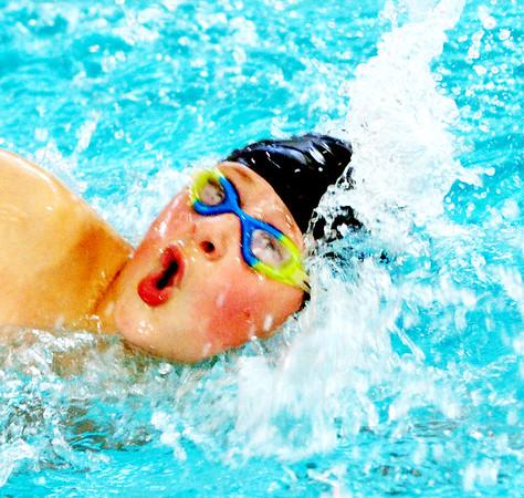 1102 stingray swimming 4