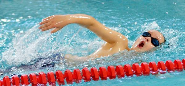 1012 stingray swimming 1