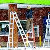 1209 snowy ladders