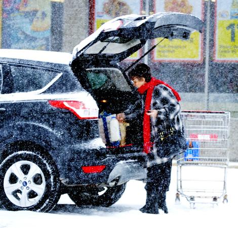 1209 snowy shopping