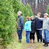 1129 christmas trees 3