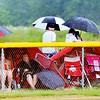 0707 wet baseballfans 2