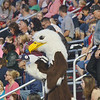 WARREN DILLAWAY / Star Beacon<br /> THE GENEVA Eagle hangs out with fans at the Spire Institute on Friday evening.
