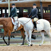 WARREN DILLAWAY / Star Beacon<br /> CONTESTANTS IN the Adult Englsh Pleasure category compete on Friday during the Runnin' Free & Silver Stir-Ups Open Horse and Pony Show at the Ashtabula County Fairgrounds.