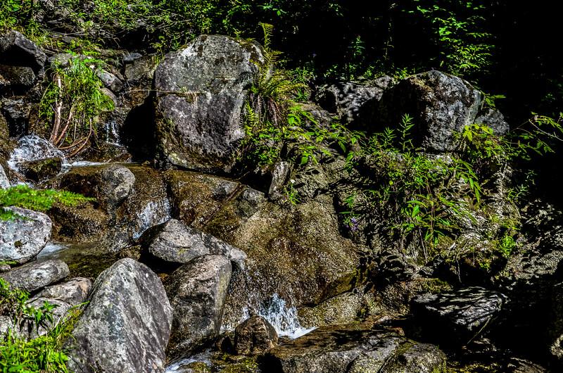 Pratt lake trail i-90 at snoqualimie summit