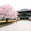 Todai-ji Temple – Nara, Japan