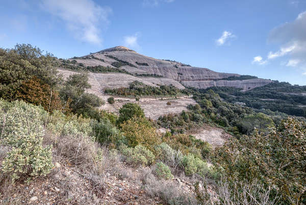 At the Foot of The Montcau Mountain (Catalonia)