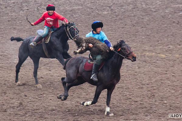 buzkashi rider with goat