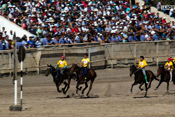 horse races at the bishkek hippodrome