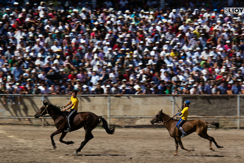 horse race on independence day in kyrgyzstan