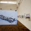 kyrgyzstan fine arts museum snow leopard exhibit