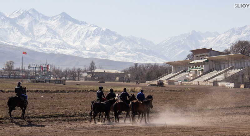 Training horses in the Bishkek Hippodrome in preparation for the Nooruz new year holiday.