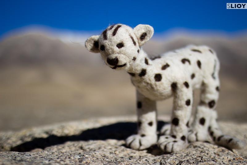 Handicrafts by Snow Leopard Enterprises.