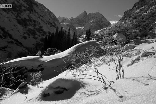 Ala-Archa Winter Snowscape