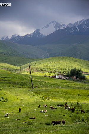 hiking with the kyrgyzstan trekking union