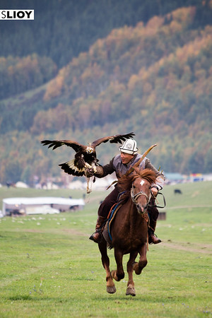A Salburuun (traditional hunting) master prepares for a demonstration at Jailoo Kyrchyn during the 2016 World Nomad Games in Kyrgyzstan.