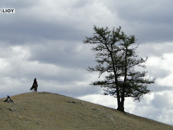 riding horses in mongolia's khovsgol lake region