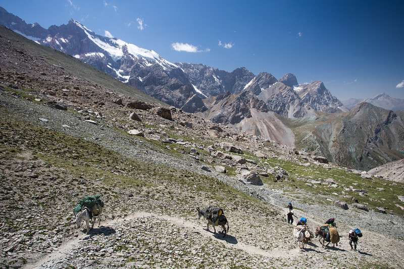 A team of donkeys climbs to the Shogun-Aga Pass from the Kulikalon Valley to Alauddin Valley in the Fann Mountains of Tajikistan.