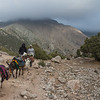 Local porters lead a group of donkeys out of the Kulikalon Valley in the Fann Mountains of Tajikistan.