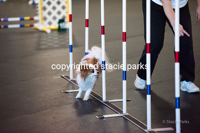 Clermont Agility