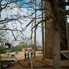 New ziplines at Camp Tejas
