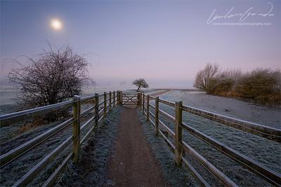 port meadow, oxfordshire, uk