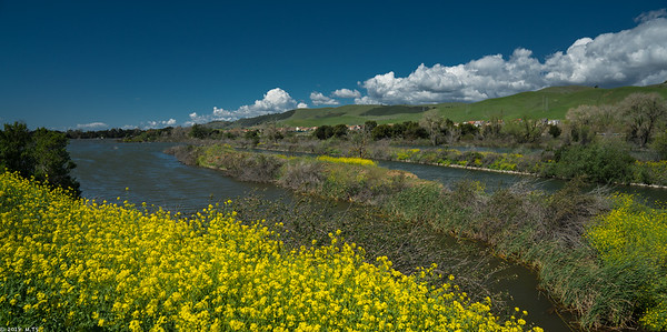 Coyote Creek Bike Trail