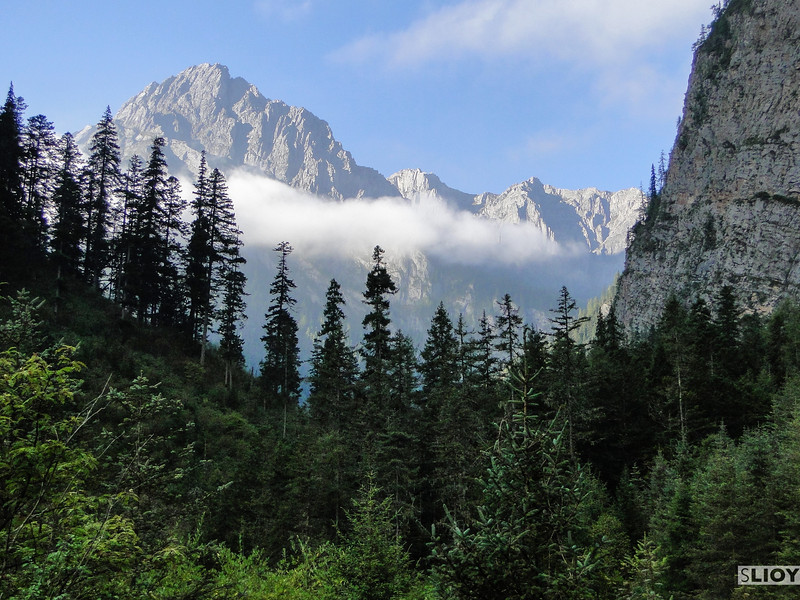 Panoramic views of the forests and mountains in Jiuzhaigou National Park in Sichuan, China.