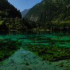 Crystal clear lake in Jiuzhaigou National Park in Sichuan, China.