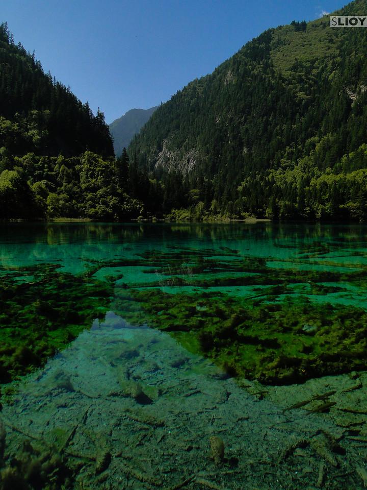 Crystal clear lake in Jiuzhaigou National Park in Sichuan, China.