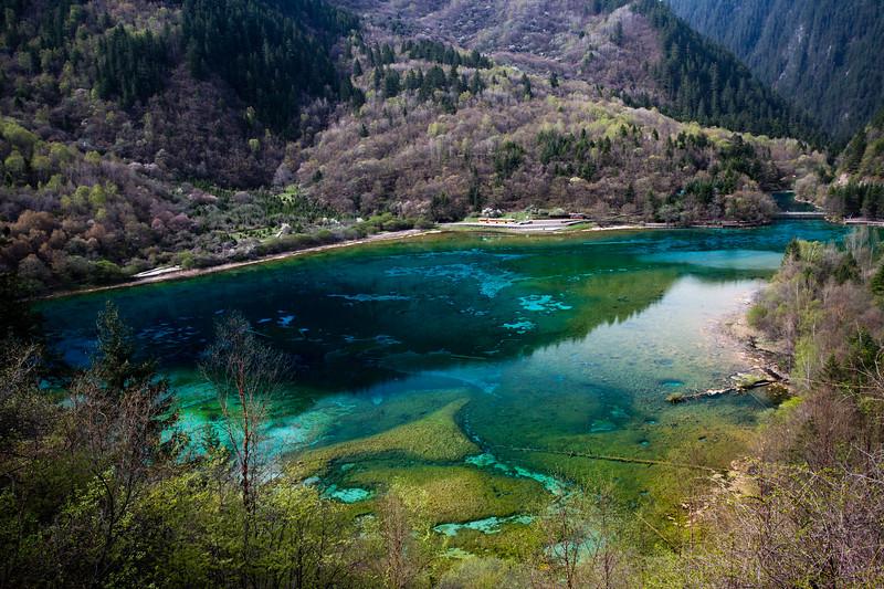 Five-Flower Lake at Jiuzhaigou National Park in Sichuan, China.