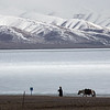 A Tibetan man leads a horse along Namtso Lake in the U region of Tibet.
