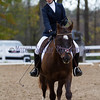 Fin Honey Run TEAM Challenge 2011 Dressage