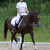 Lauren Honey Run Encore Horse Trials 2012 Dressage