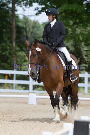 Maddy Dressage Cobblestone Horse Trials 2011